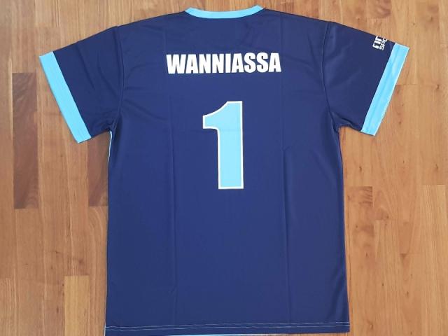 wanniassa-soccer-tee-back